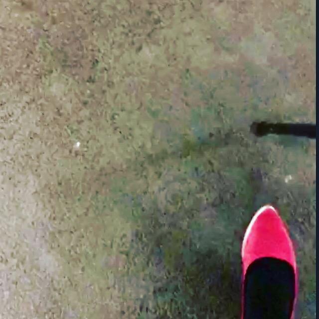 Foot & walking stick