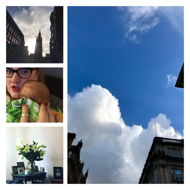 Blue sky, Glasgow, lilies