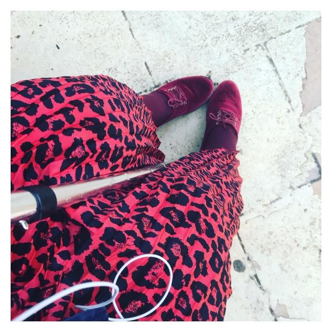 Leopard print and velvet