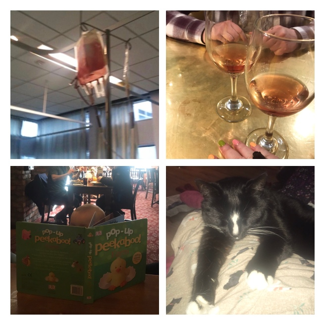 Blood transfusion, Rose wine, snuggling cat, reading baby