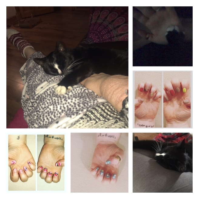 Cat snuggles & nail art