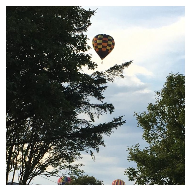 Hot air balloon in riding above trees