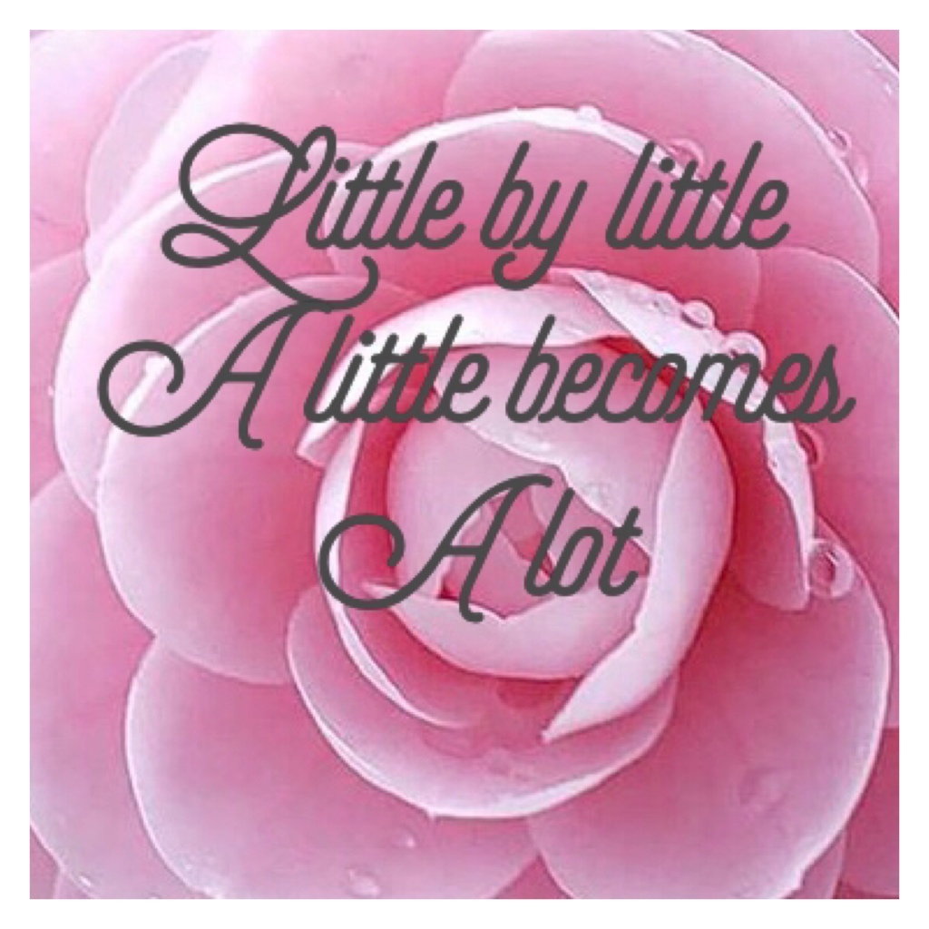 Little by little, a little becomes a lot in grey on pink flower backdrop