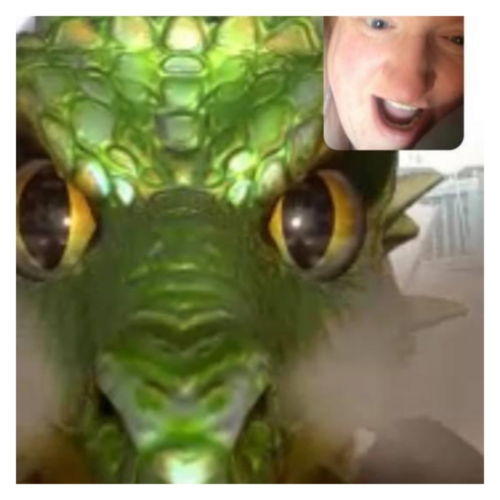 Video call with dragon filter