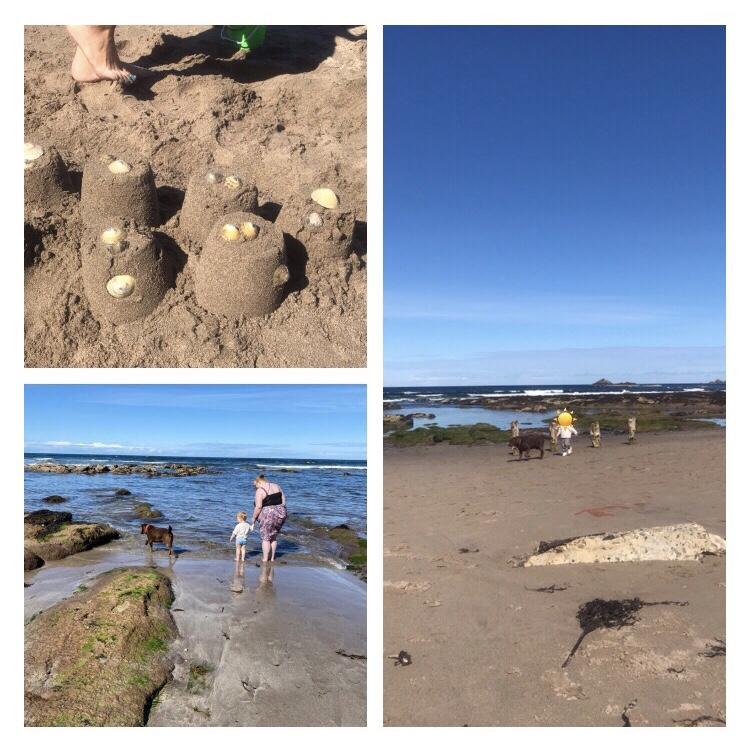 Sandcastles  on sunny beach