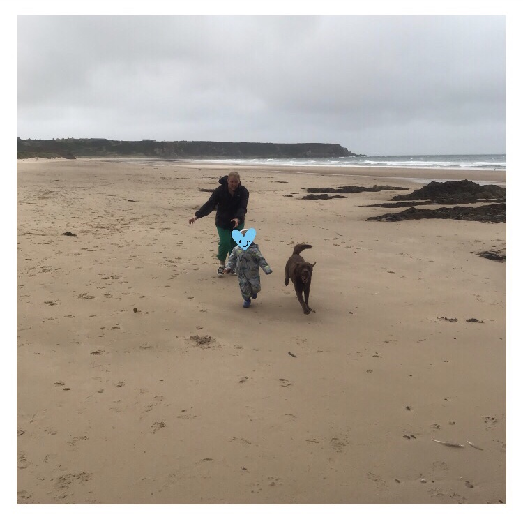 Woman chasing toddler and dog on windy beach